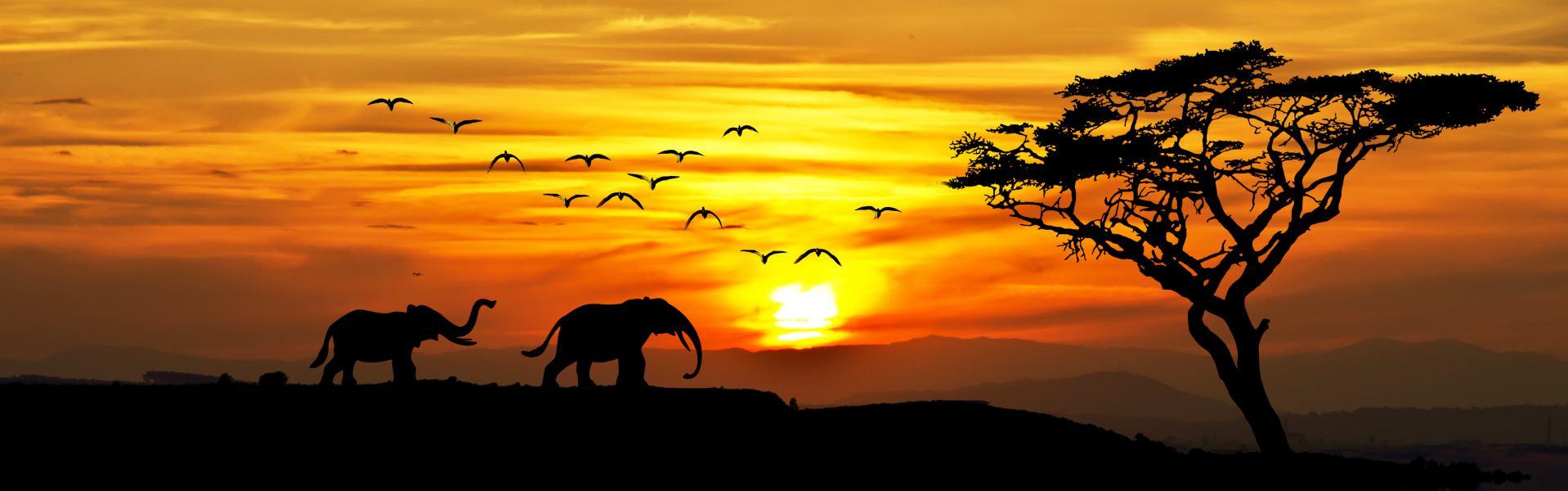 aventura-kenya